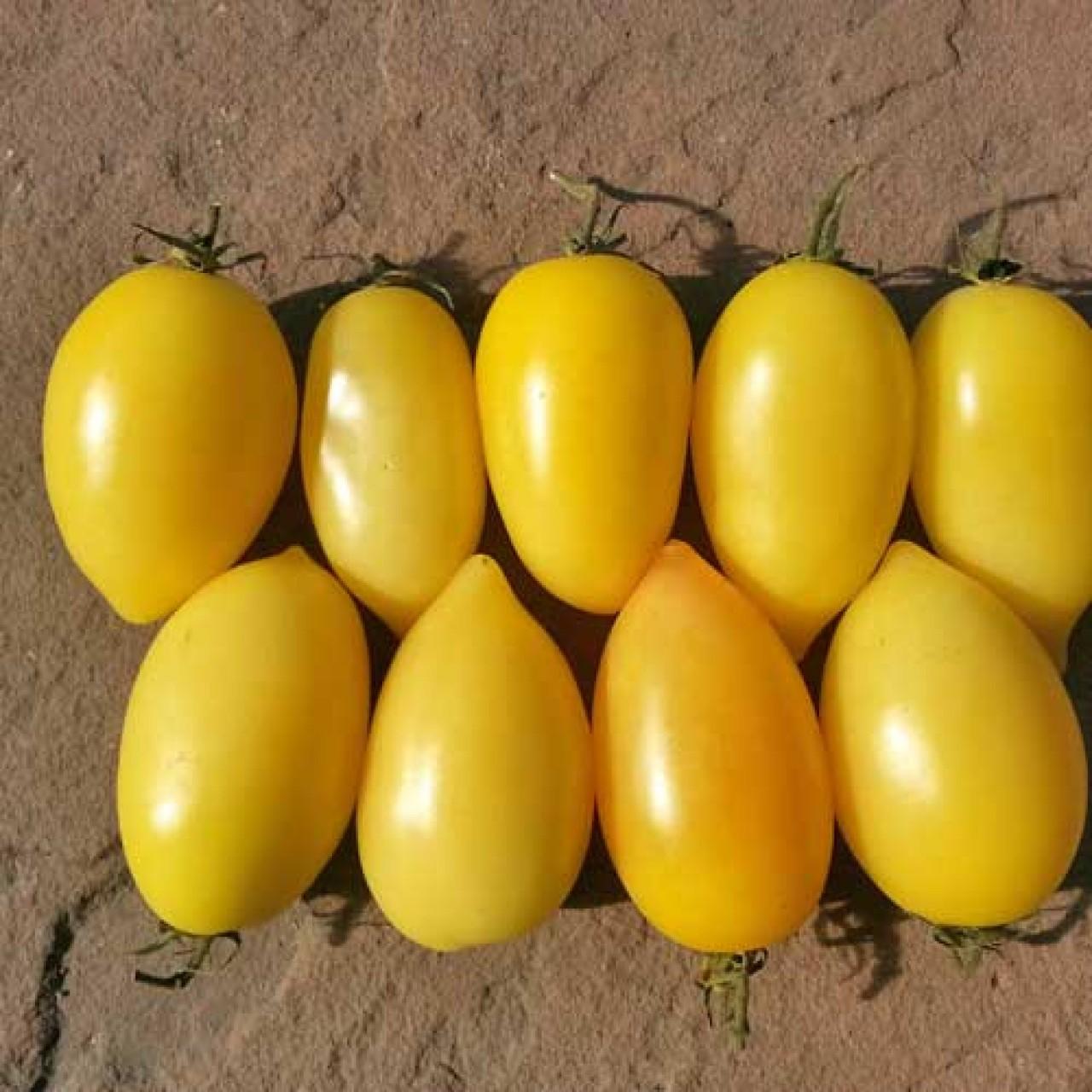 黄色がかったトマトソースを演出するのに最適/クリームソーセージトマト