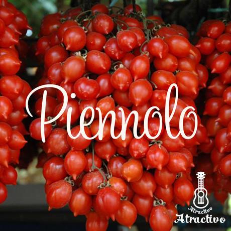 ナポリの赤い宝石ピエンノロトマトの種