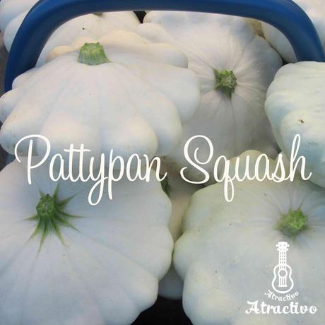 変わった形のカボチャ「パティパンスクワッシュ(白)」の種