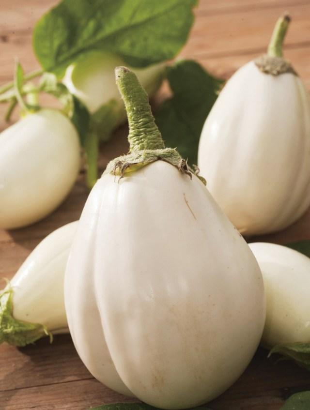 白くて可愛い大きなイタリアのナス/クララ