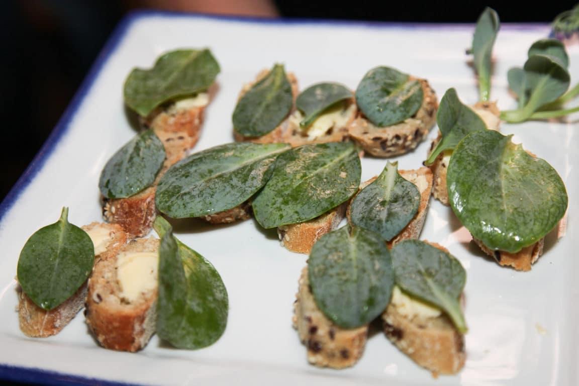 葉を食べると生牡蠣のような味がする/オイスターリーフ