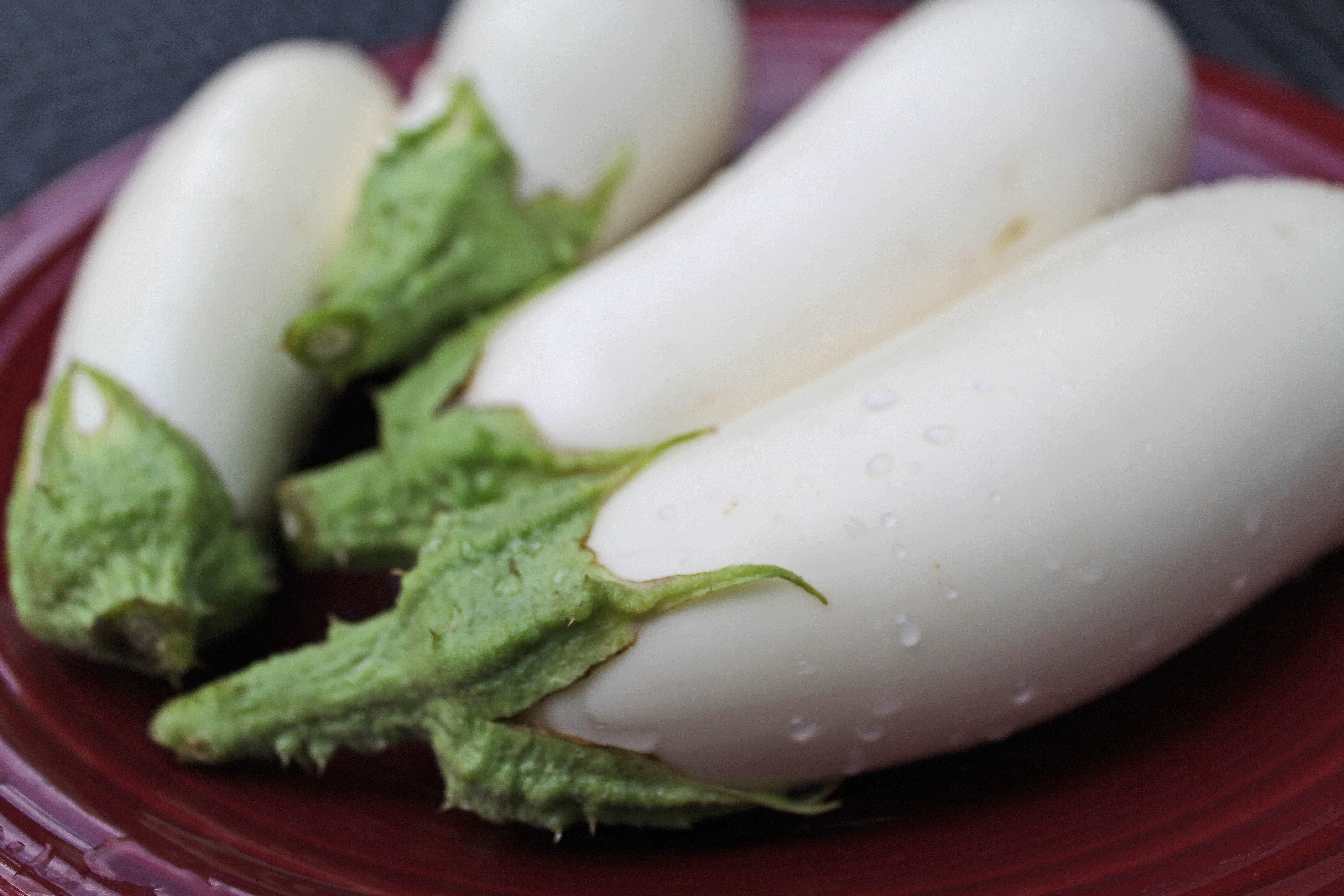 白ナス ホワイトベルの栽培方法