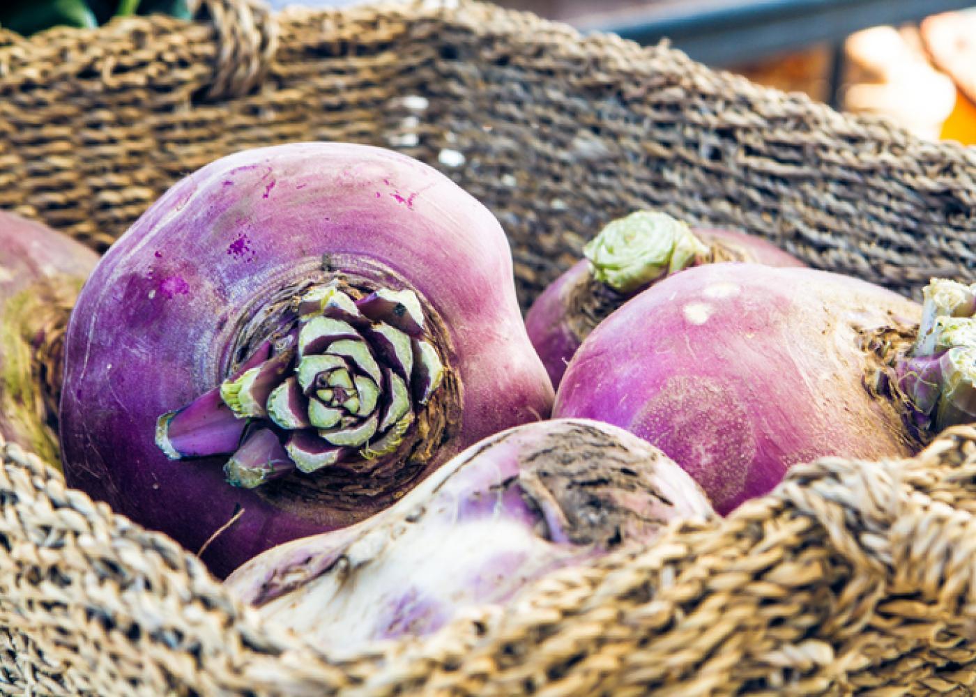 北欧冬期の貴重な貯蔵野菜ルタバカ
