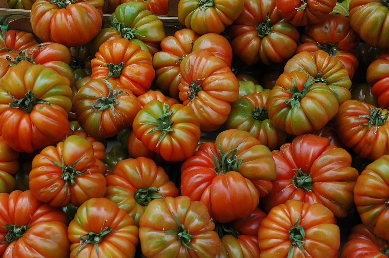 スペインの高級品種のトマト ラフ・トマト(トマテ・ラフ)