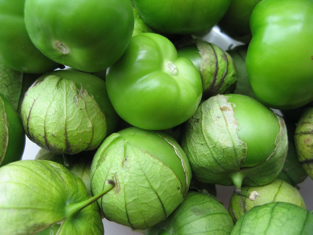 メキシコ料理に欠かせない食材トマティーヨ