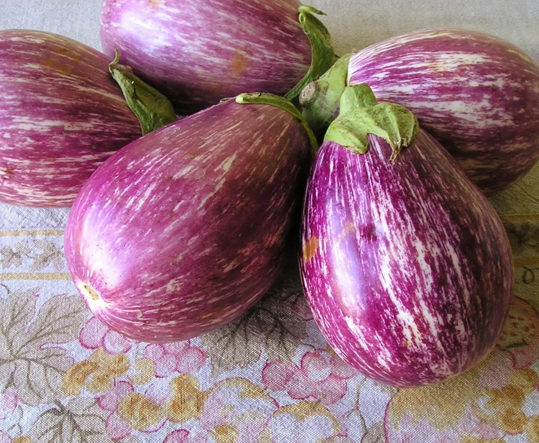 白と紫のゼブラ柄が特徴なイタリアなす「カプリス」